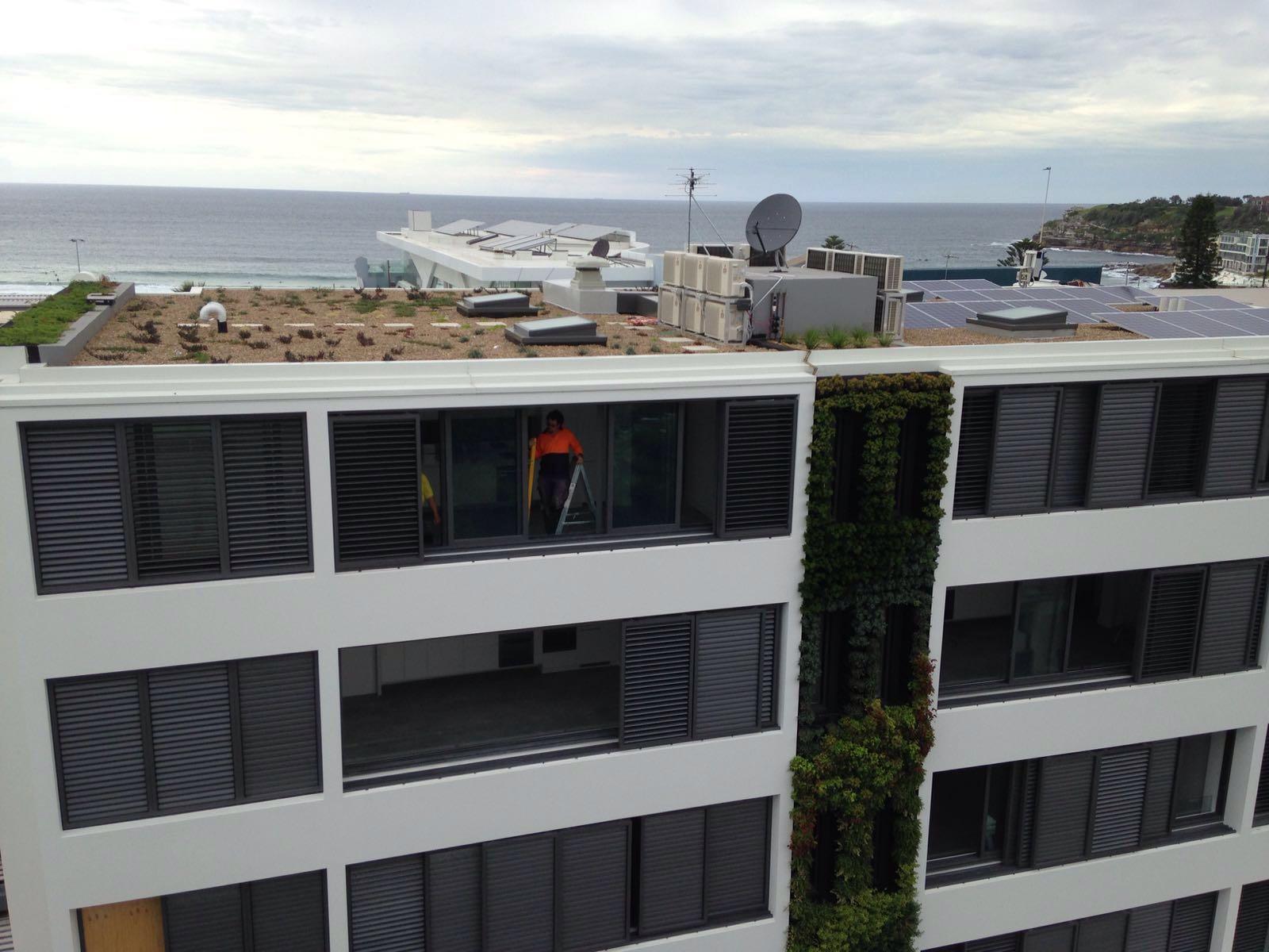 Green Roof Green Wall Vertical Garden Installation Bondi Beach Sydney Australia