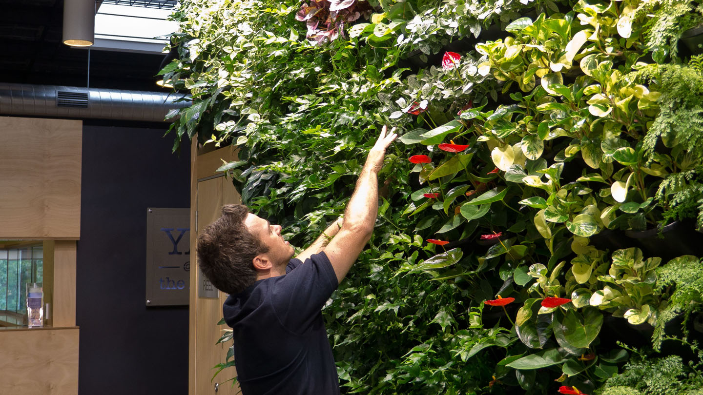 Vertical garden maintenance atlantis aurora for Garden maintenance