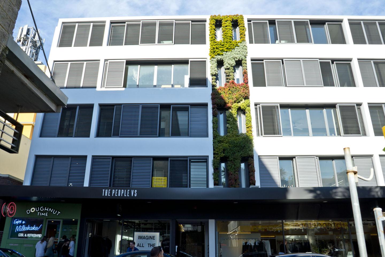 Bondi Apartment Green Wall - Atlantis Aurora