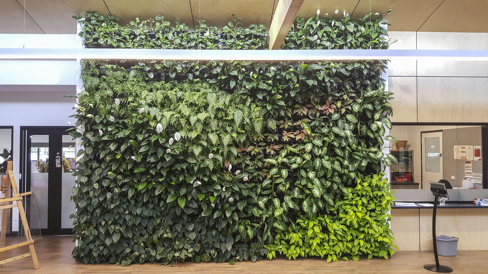 [ vertical garden maintenance ]
