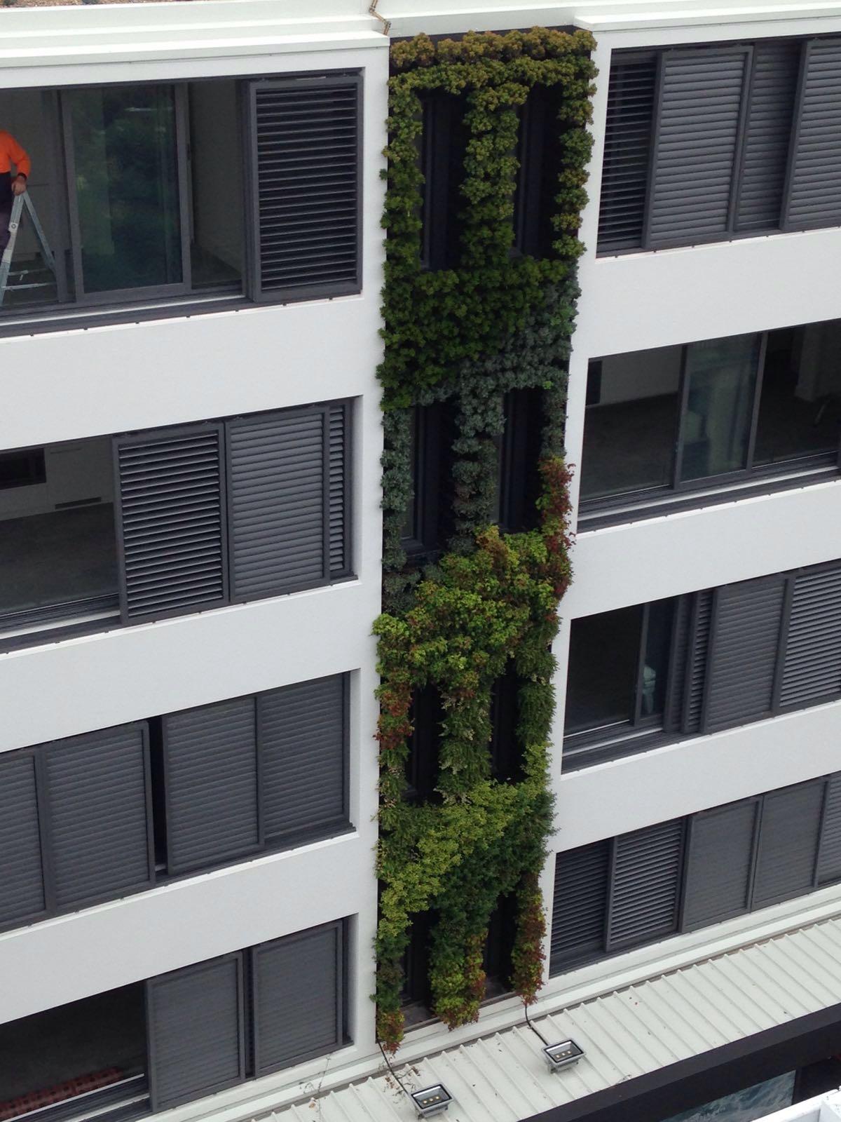 Green Wall Vertical Garden Installation Bondi Beach Australia
