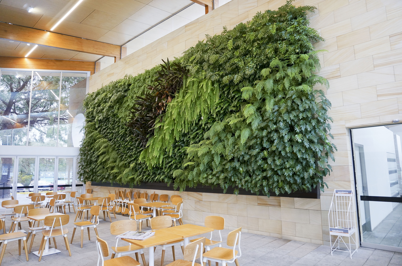 Kitchen Decorating Ideas Green Walls